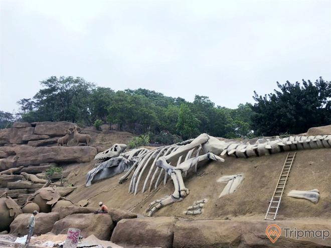 Mô hình xương khủng long khổng lồ tại công viên