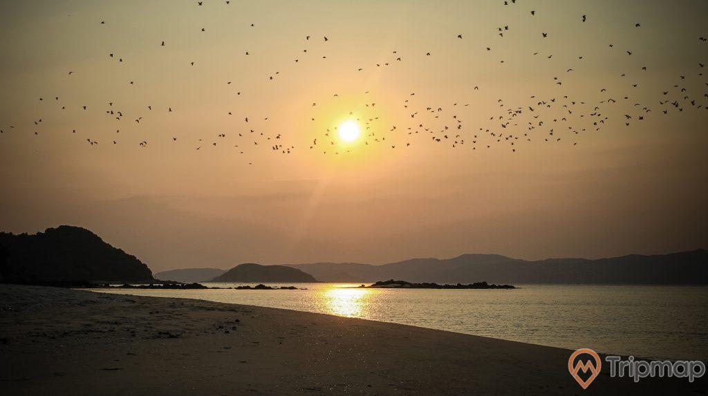 Vẻ đẹp hoàng hôn trên đảo Cô Tô con, ảnh chụp ngoài trời, hoàng hôn tại bãi biển đảo cô tô con, đàn chim bay trên bầu trời đảo cô tô con, đảo phía xa xa