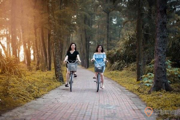 Tải nghiệm đạp xe trên con đường Tình Yêu đảo Cô Tô