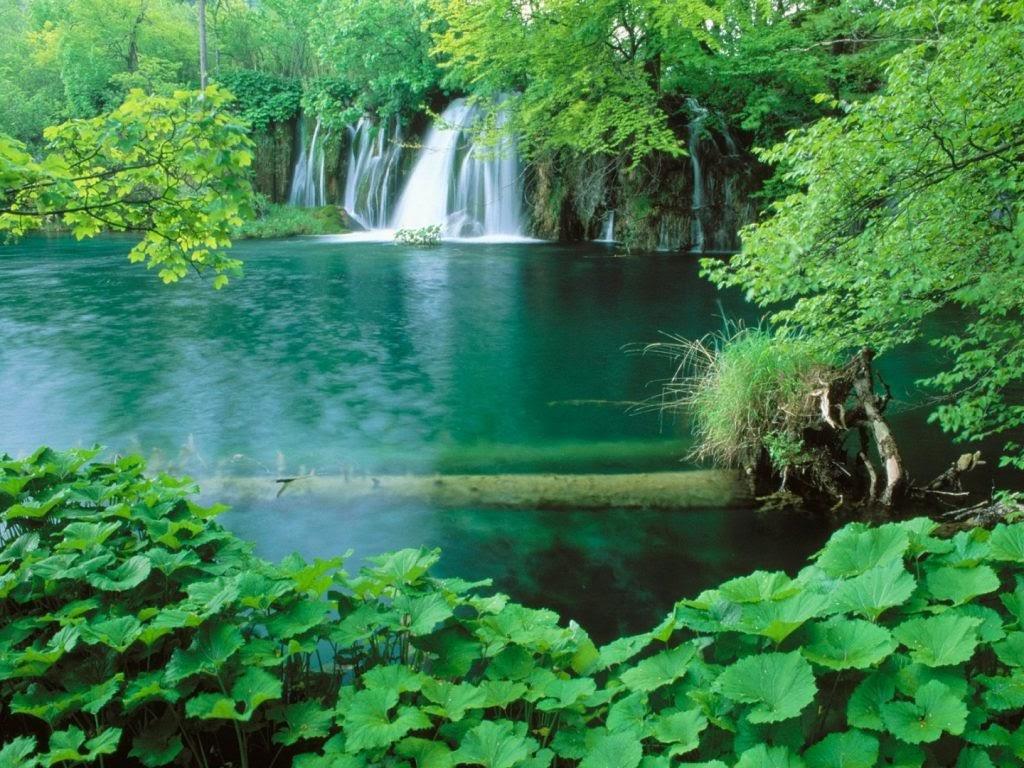 Vườn quốc gia Bến En