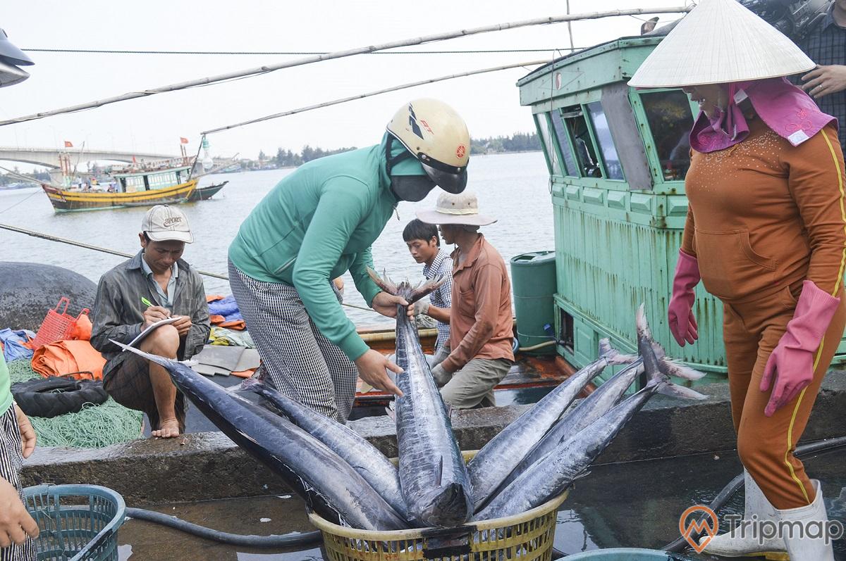 Nguồn hải sản dồi dào được đánh bắt xa - gần bờ