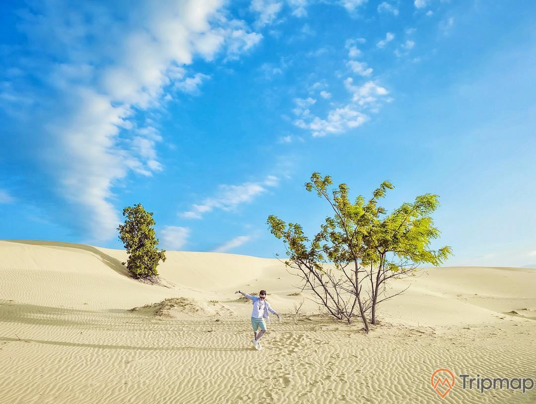 Cồn cát đầy nắng và gió