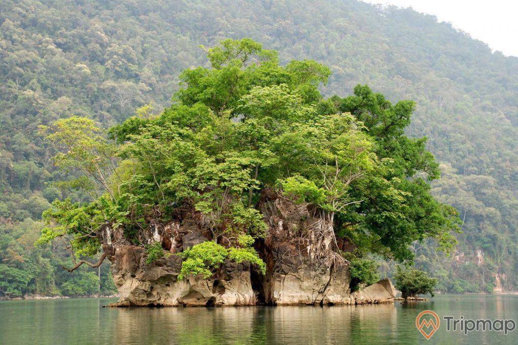 cây cối xanh tươi, hòn bà goá giữa hồ ba bể, ảnh chụp ban ngày