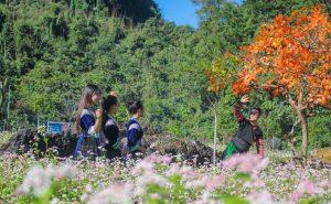 Du lịch sinh thái cộng đồng Gia Khâu