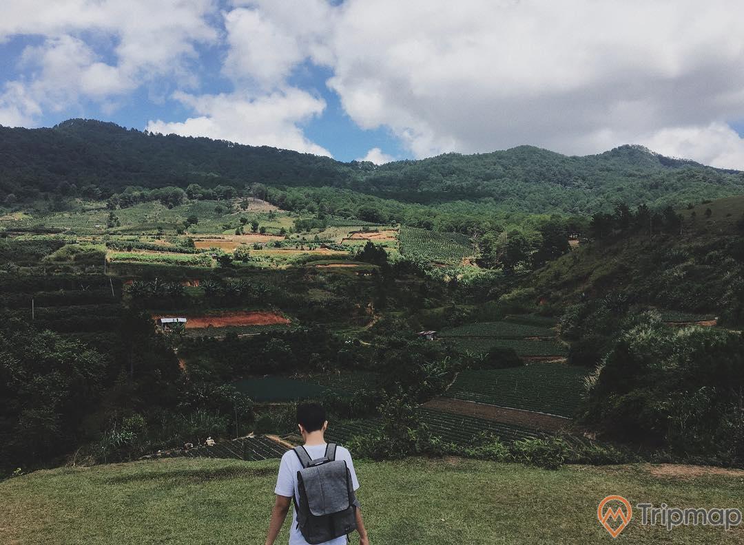 Không gian thoáng mát, cảnh quan hấp dẫn tại núi Langbiang