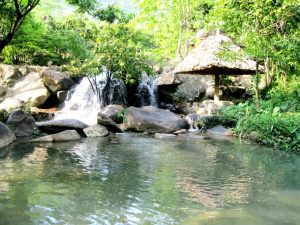 Suối Sừng Trâu