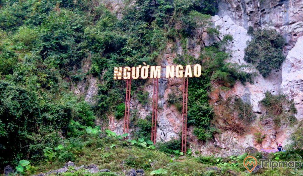 bảng tên Động Ngườm Ngao cạnh chân núi, cây cối xanh tươi, ảnh chụp ngoài trời