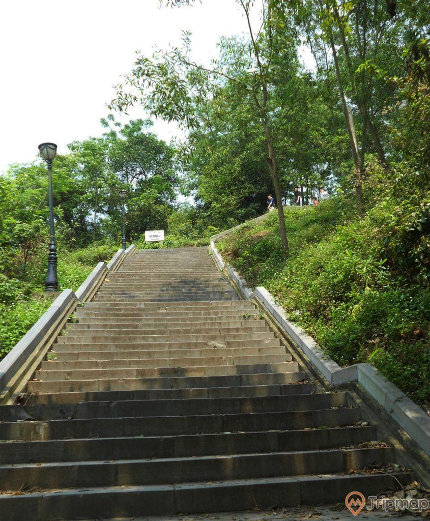 Con đường bậc thang hướng đi lên chùa Long Đọi Sơn, cây cối xanh tươi