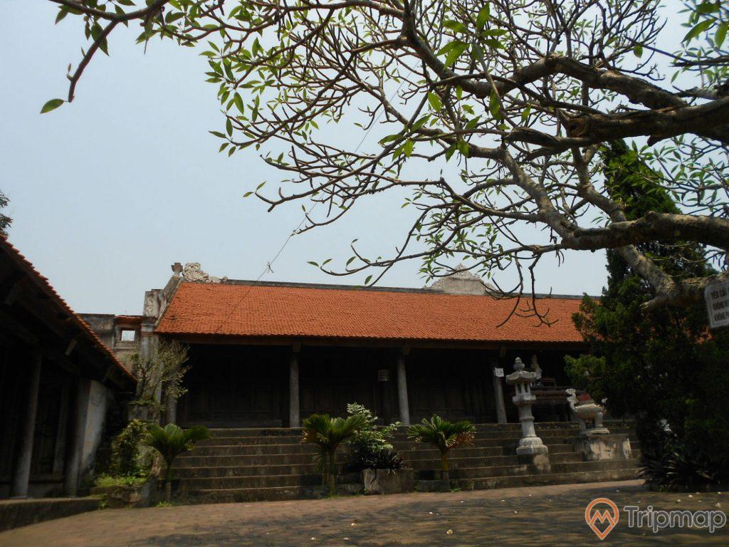 Kiến trúc cổ vẫn còn được lưu giữ tại chùa Long Đọi Sơn, cây cối cổ thụ xanh tươi